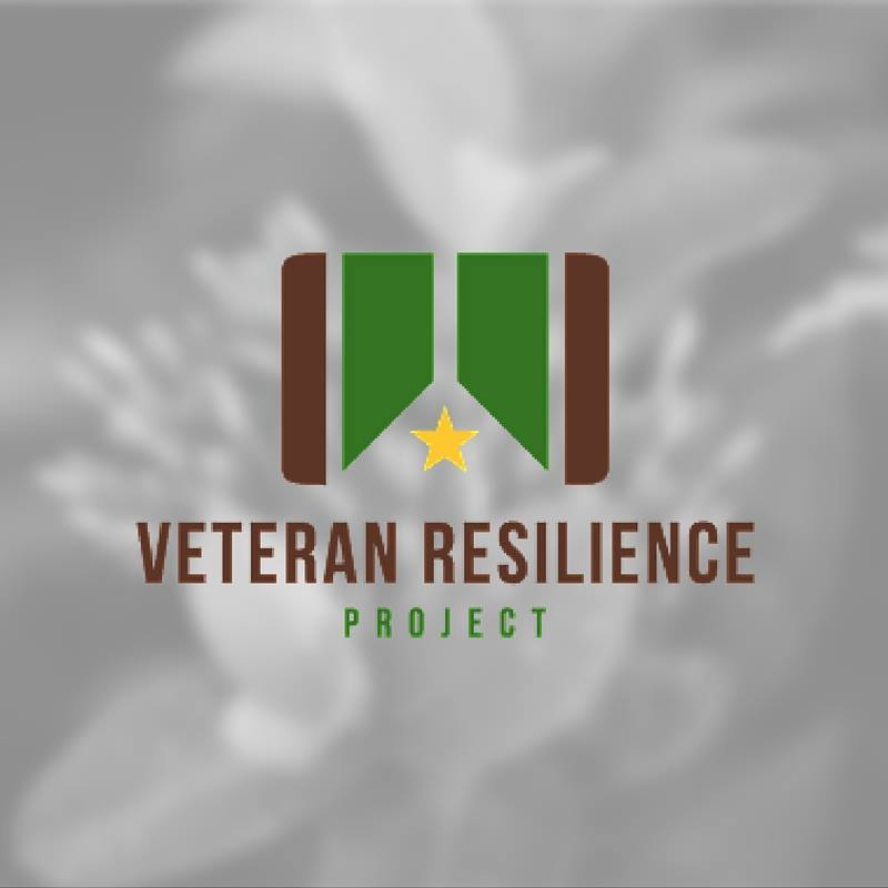 The Vessey Chapter of the Association of the U.S. Army and Veterans Resilience Project